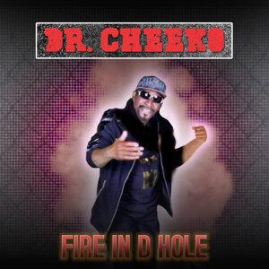 Dr. Cheeko 歌手頭像