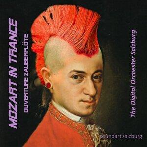 Digital Orchestra Salzburg 歌手頭像