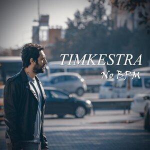 Timkestra 歌手頭像
