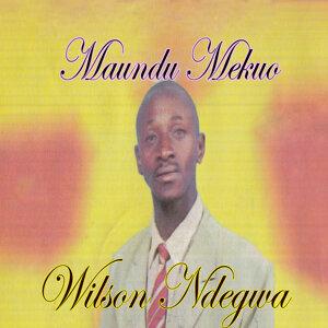 Wilson Ndegwa 歌手頭像