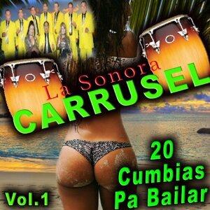 La Sonora Carrusel 歌手頭像