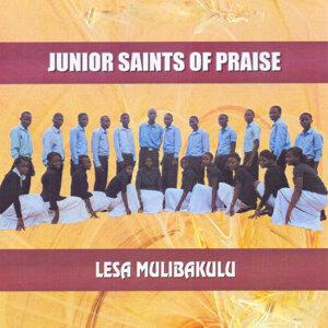 Junior Saints Of Praise 歌手頭像