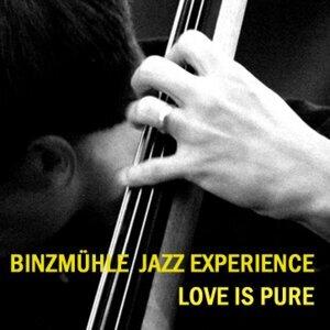 Binzmühle Jazz Experience 歌手頭像