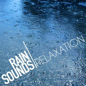 Rain Sounds Relaxation 歌手頭像
