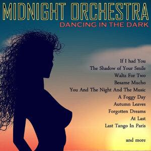 Midnight Moods Orchestra 歌手頭像