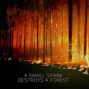 A Small Spark Destroys a Forest