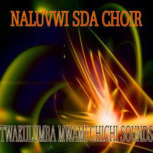 Naluvwi SDA Choir 歌手頭像