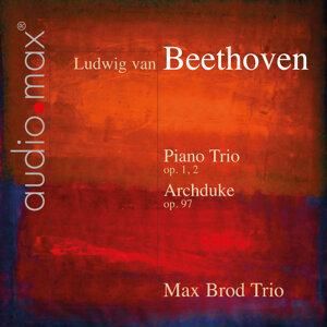 Max Brod Trio 歌手頭像