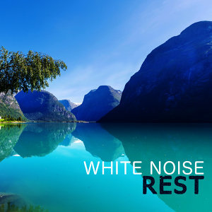 White Noises 歌手頭像