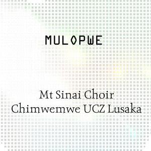 Mt Sinai Choir Chimwemwe UCZ Lusaka 歌手頭像