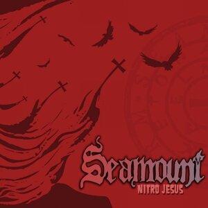 Seamount 歌手頭像