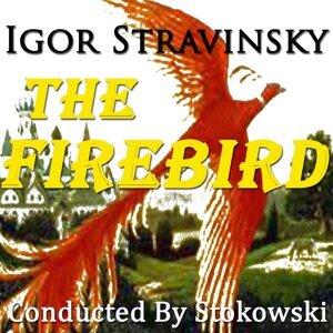 Berliner Philharmoniker, Leopold Stokowsky 歌手頭像
