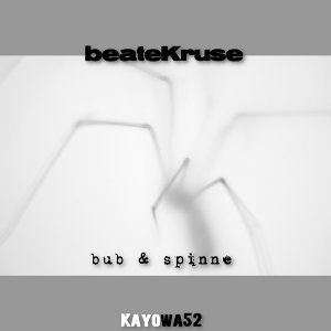 Beate Kruse 歌手頭像
