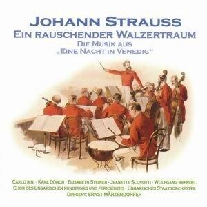 Chor des ungarischen Rundfunks, Ungarisches Staatsorchester, Ernst Märzendorfer 歌手頭像