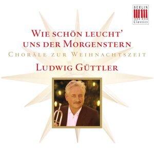 Ludwig Güttler, Virtuosi Saxoniae, Blechbläserensemble Ludwig Güttler & Friedrich Kircheis 歌手頭像