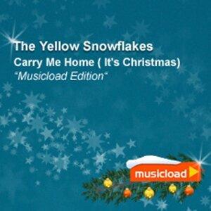 The Yellow Snowflakes 歌手頭像