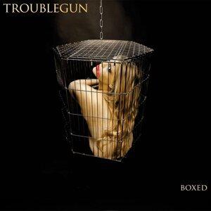 Troublegun 歌手頭像