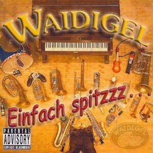Waidigel 歌手頭像