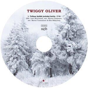 Twiggy Oliver 歌手頭像