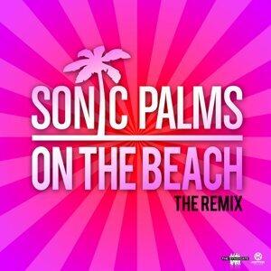 Sonic Palms 歌手頭像