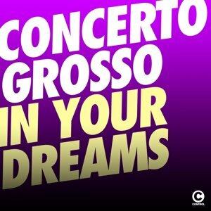Concerto Grosso 歌手頭像