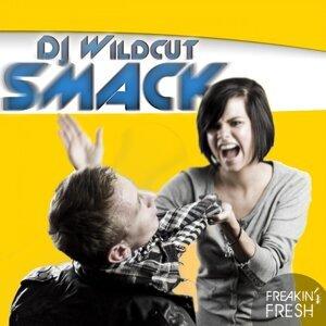 DJ Wildcut 歌手頭像