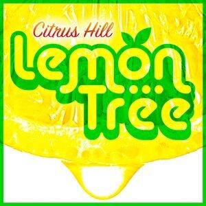 Citrus Hill 歌手頭像