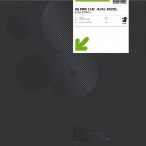 Da Hool feat. Jackie Bredie 歌手頭像