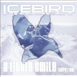 Icebird Project 歌手頭像