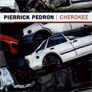 Pierrick Pedron 歌手頭像
