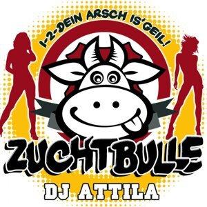 DJ Attila 歌手頭像