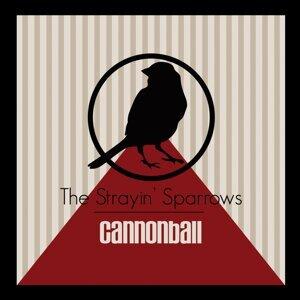 The Strayin' Sparrows 歌手頭像