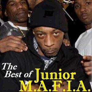 Junior M.A.F.I.A. 歌手頭像