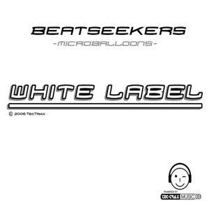 Beatseekers 歌手頭像