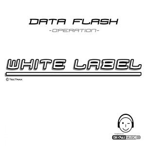 Data Flash 歌手頭像