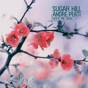 Sugar Hill & Andre Plati 歌手頭像