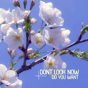 Dont Look Now 歌手頭像