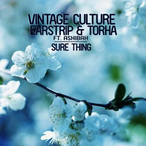 Vintage Culture & Earstrip & Torha feat. Ashibah 歌手頭像