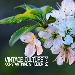 Vintage Culture, Constantinne & Felten 歌手頭像