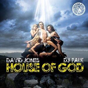 David Jones & DJ Falk 歌手頭像