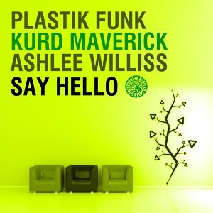Plastik Funk & Kurd Maverick feat. Ashlee Williss 歌手頭像