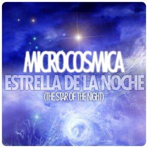 Microcosmica 歌手頭像