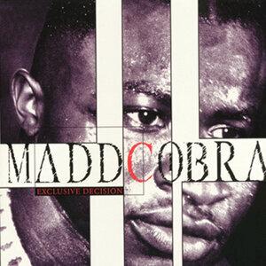 Madd Cobra 歌手頭像