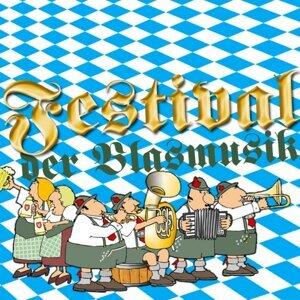 Die Schloßberger Musikanten 歌手頭像
