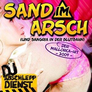DJ Abschleppdienst 歌手頭像