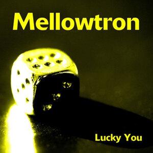 Mellowtron 歌手頭像