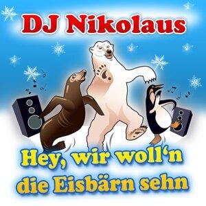 DJ Nikolaus 歌手頭像