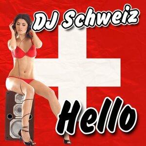 DJ Schweiz 歌手頭像