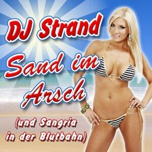 DJ Strand 歌手頭像