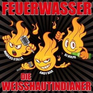 Die Weisshautindianer 歌手頭像